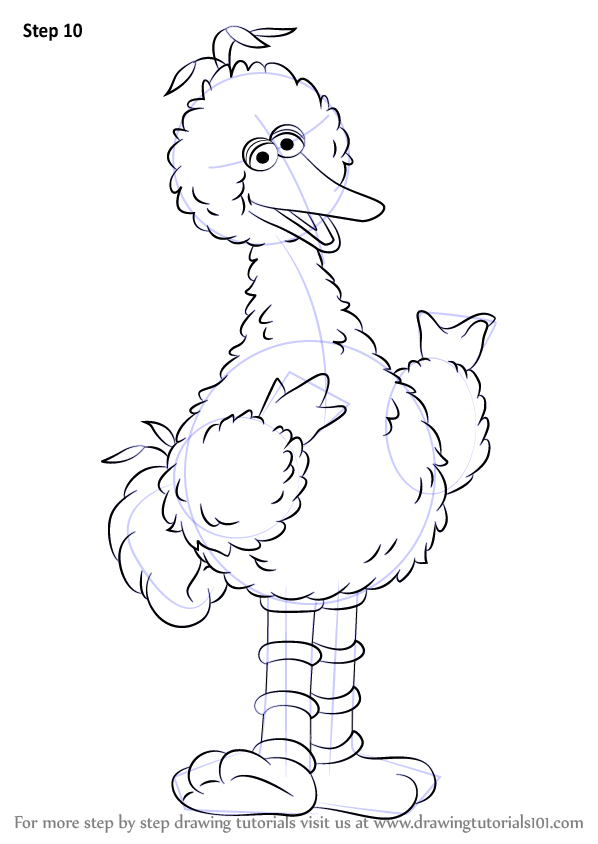 Learn How To Draw Big Bird From Sesame Street Sesame