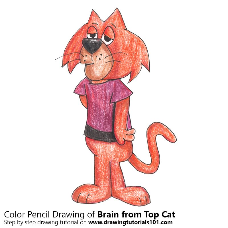 Brain from Top Cat Colored Pencils - Drawing Brain from ...