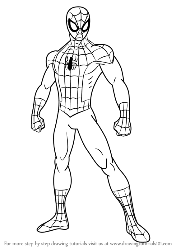 Learn How To Draw Ultimate Spider Man Ultimate Spider Man Step By