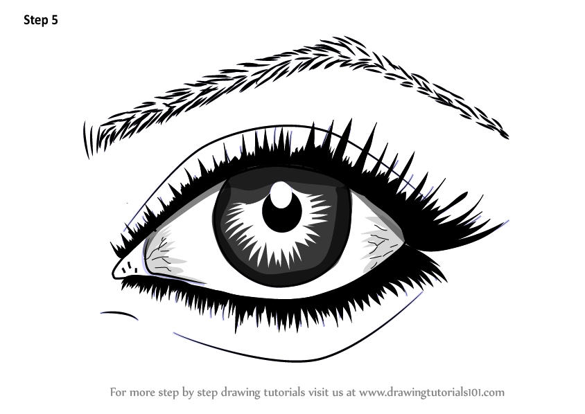 Step by Step How to Draw Realistic Eyes With Pencil ... How To Draw A Realistic Eye Step By Step With Pencil
