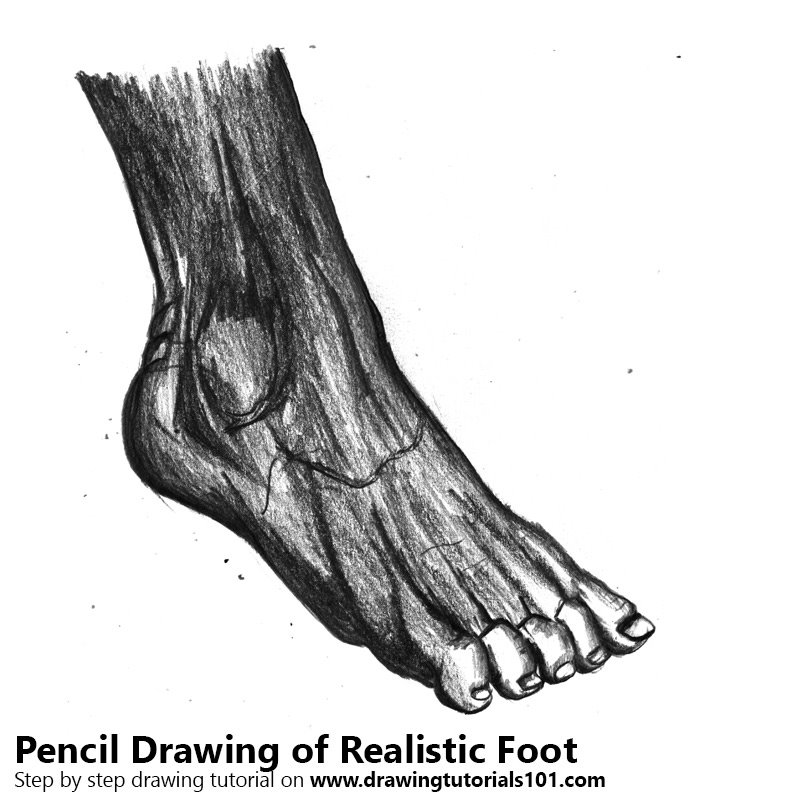 Pencil Sketch of Realistic Foot - Pencil Drawing