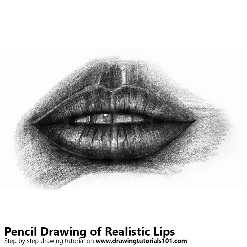 Realistic Lips Pencil Drawing
