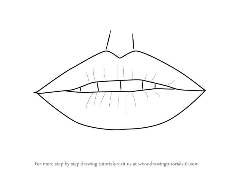 Learn How To Draw Realistic Lips With Pencils Lips Step By Step