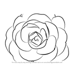 How to Draw a Camellia Flower
