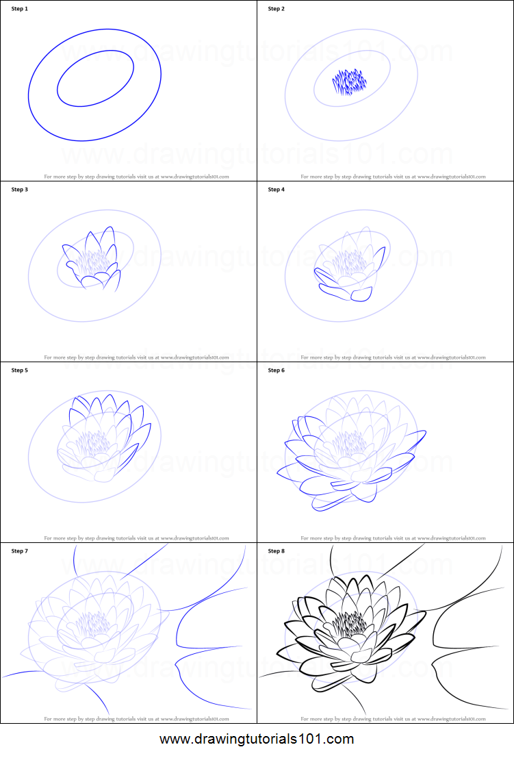 How To Draw Lily Pad Printable Step By Step Drawing Sheet