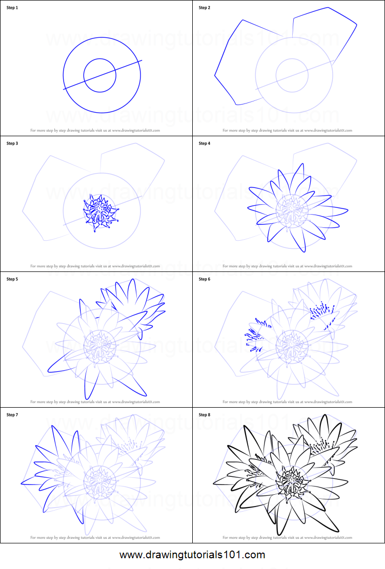 How to draw water lily plant printable step by step drawing sheet how to draw water lily plant printable step by step drawing sheet drawingtutorials101 izmirmasajfo