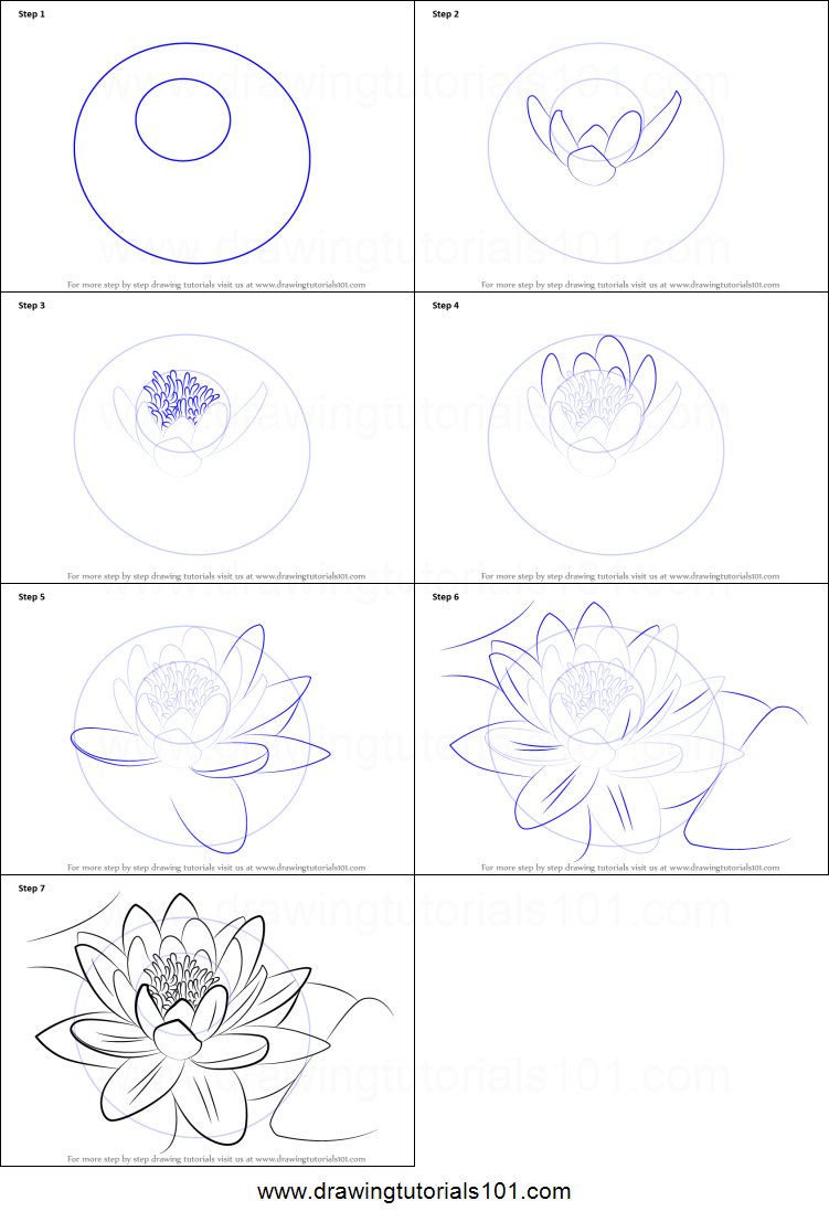 How to draw a water lily printable step by step drawing sheet how to draw a water lily printable step by step drawing sheet drawingtutorials101 izmirmasajfo
