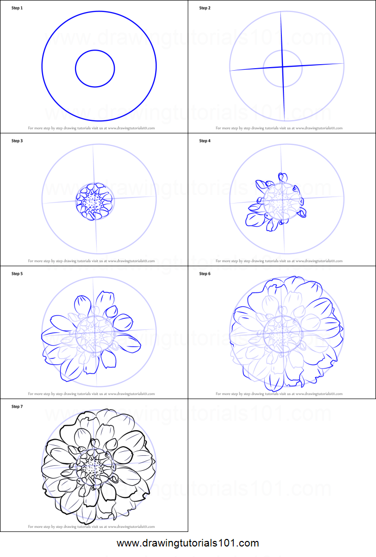 How To Draw Dahlia Flower Printable Step By Step Drawing Sheet