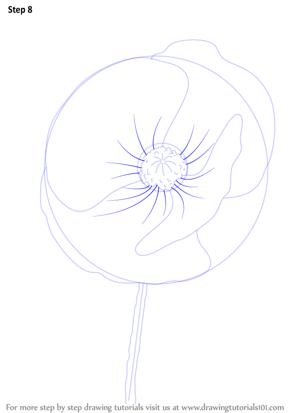 Drawing Ideas Flowers Step By Step Flowers Healthy