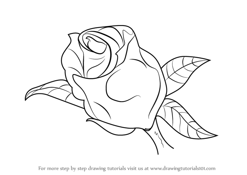 how to draw flowers tutorials