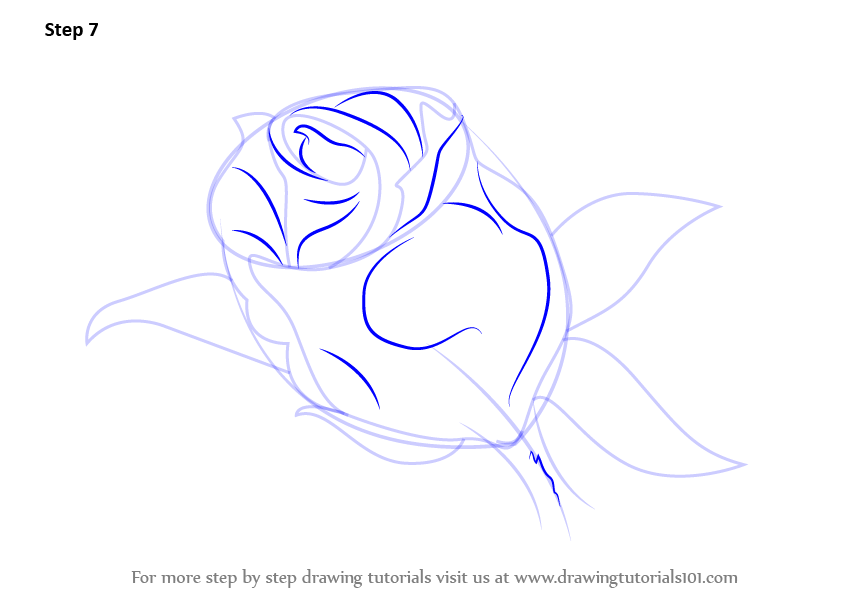 Learn how to draw a beautiful rose rose step by step for How to draw a rose bush step by step