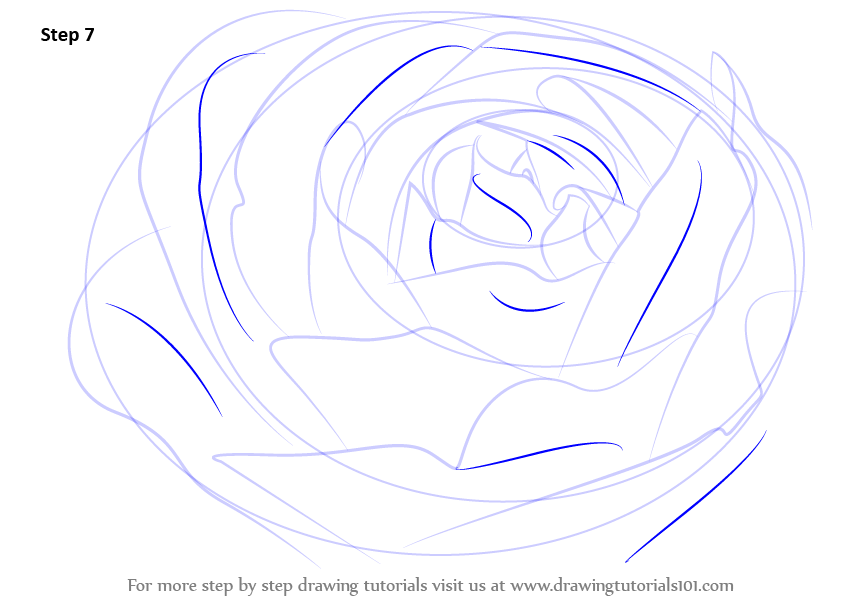 Flower Drawing Tutorials Step By Step
