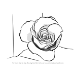 How to Draw a Rose Closeup
