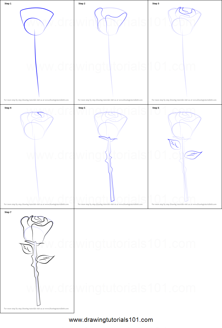 How To Draw A Rose Easy Printable Step By Step Drawing Sheet