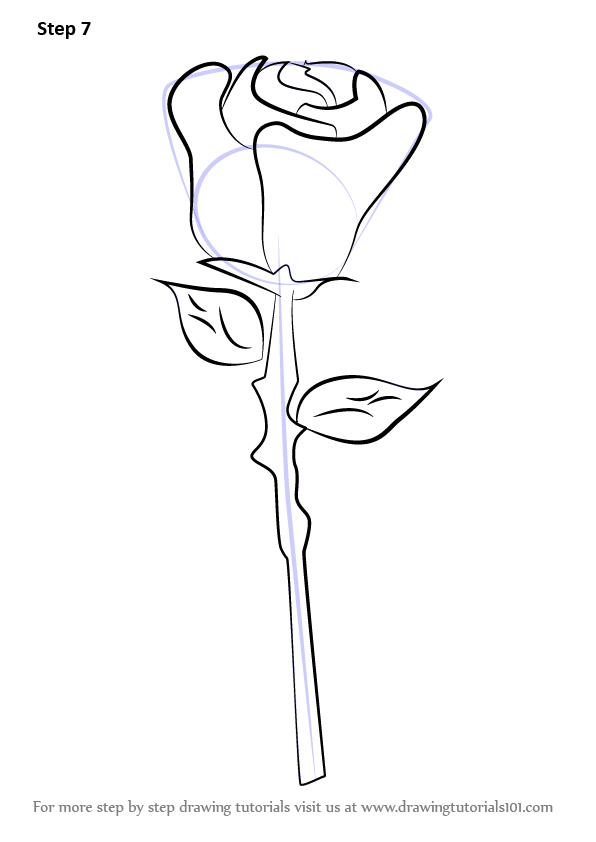 Easy Drawing Of A Rose Learn How to Dr...