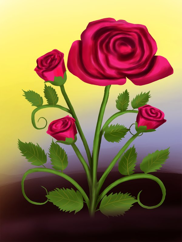 Learn How To Draw A Rose Plant Rose Step By Step Drawing Tutorials