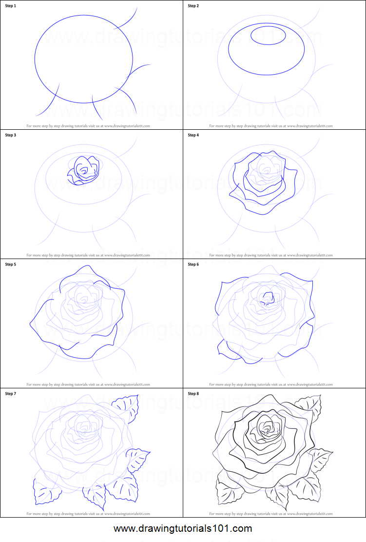 How to draw a rose printable step by step drawing sheet for How to draw a rose bush step by step