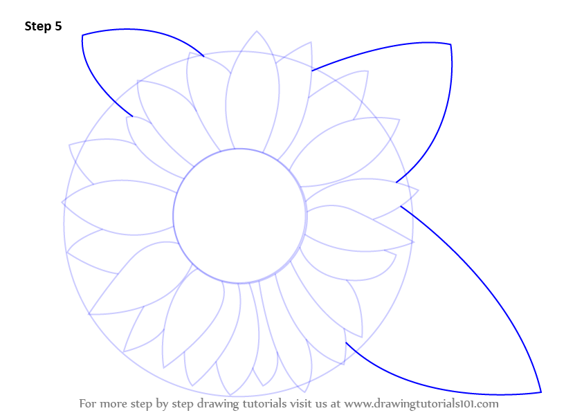 Learn how to draw a sunflower sunflower step by step for Easy flower drawing tutorials
