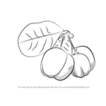 How to Draw Barbados Cherry