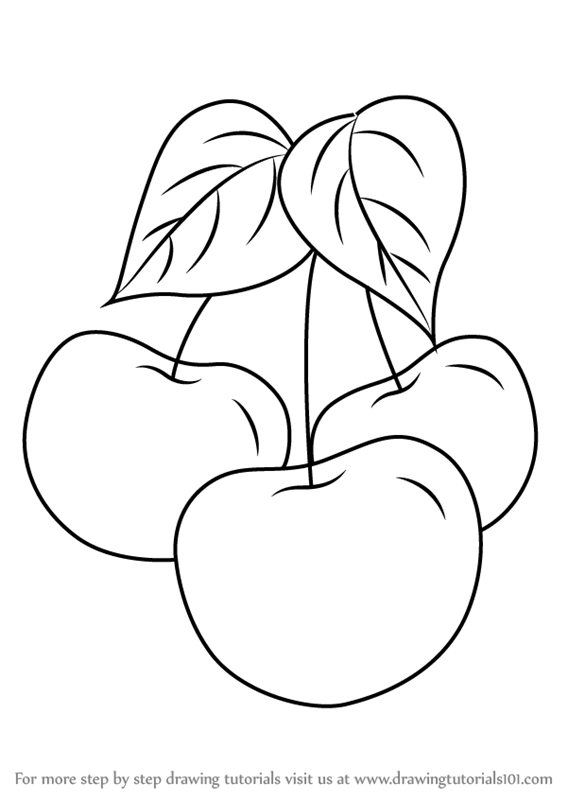 Learn How To Draw Plums Fruits Step By Step Drawing