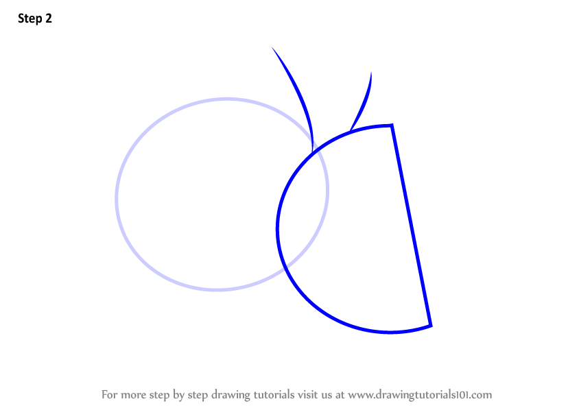 Learn How To Draw A Sliced Lime Fruits Step By Step Drawing Tutorials