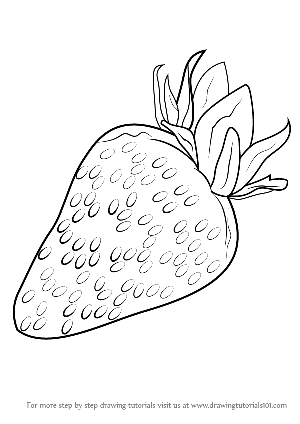 learn how to draw strawberry fruits step by step drawing tutorials
