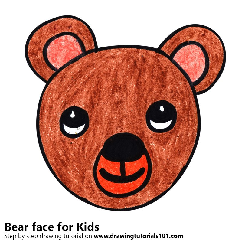 Drawing Of A Bear Face