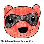 How to Draw a Black-Footed Ferret Face for Kids