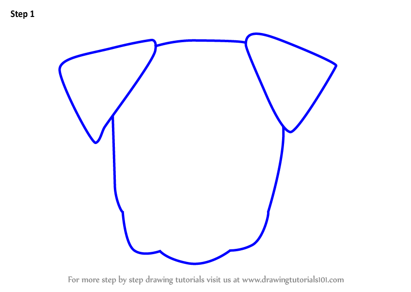 Learn How To Draw A Boxer Dog Face For Kids Animal Faces For Kids