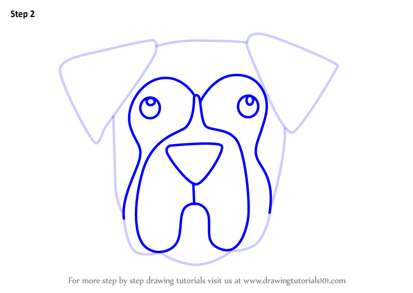 Step By Step How To Draw A Boxer Dog Face For Kids