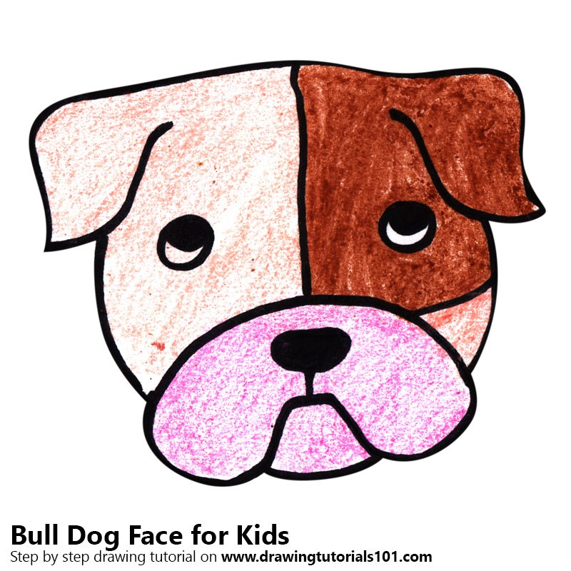 Learn How To Draw A Bull Dog Face For Kids Animal Faces For Kids