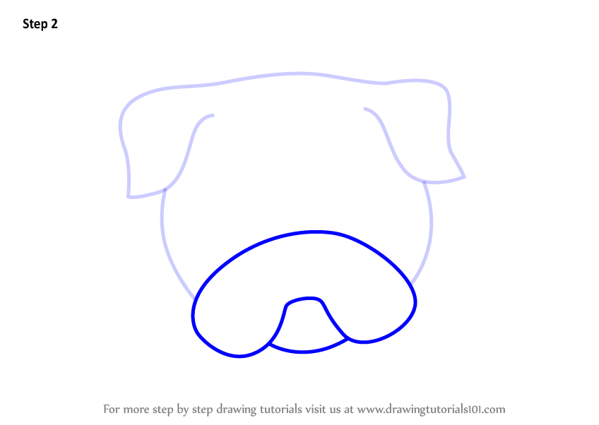 how to draw a pitbull dog face step by step