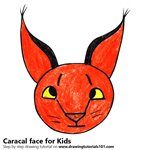 How to Draw a Caracal face for Kids