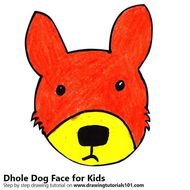 Learn How to Draw a Dhole Dog Face for Kids (Animal Faces ...