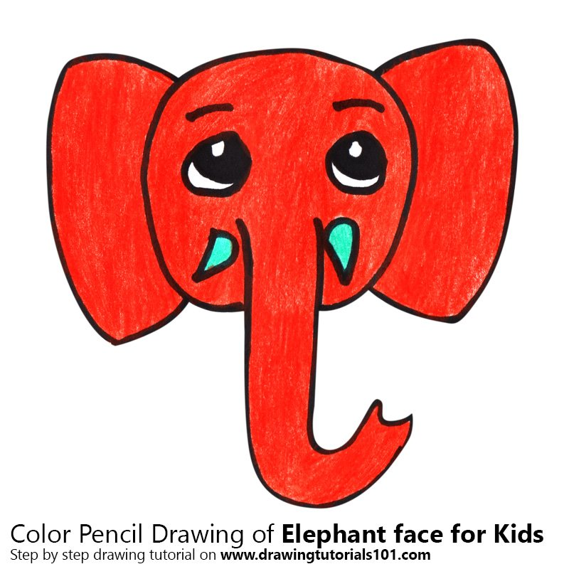 how to draw the face of an elephant