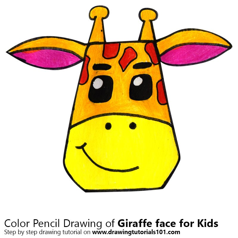 how to draw a realistic giraffe face step by step