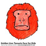 How to Draw a Golden Lion Tamarin Face for Kids