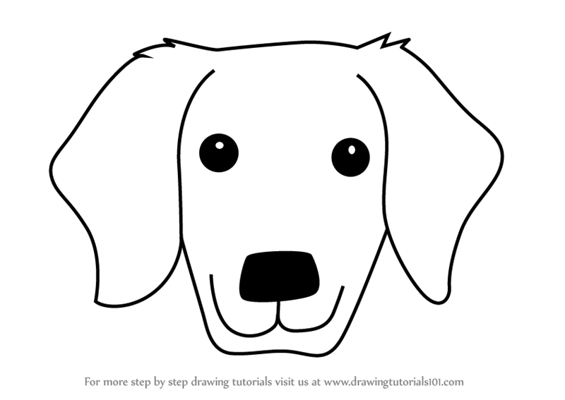 Line Drawing Of A Dog S Face : Learn how to draw a golden retrivever dog face for kids