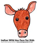How to Draw an Indian Wild Ass Face for Kids
