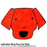 How to Draw a Labrador Dog Face for Kids