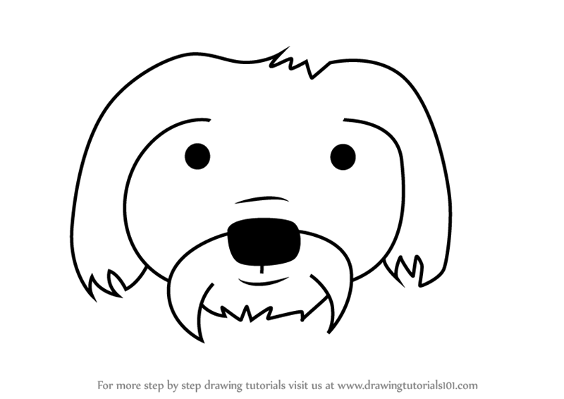 Learn How to Draw a Maltese Dog Face for Kids (Animal ...