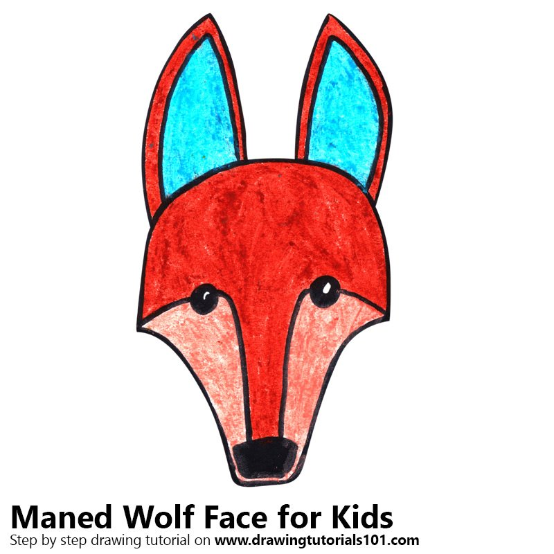Learn How To Draw A Maned Wolf Face For Kids Animal Faces For Kids