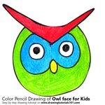 How to Draw an Owl Face for Kids