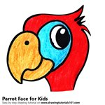 How to Draw a Parrot Face for Kids