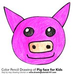 How to Draw a Pig Face for Kids