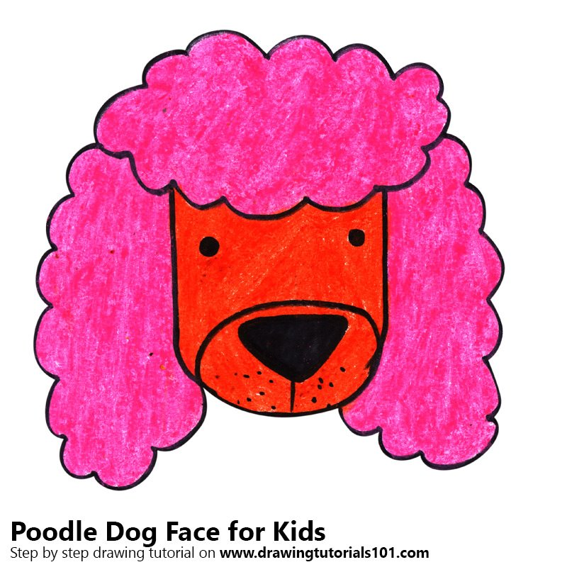 Learn How To Draw A Poodle Dog Face For Kids Animal Faces
