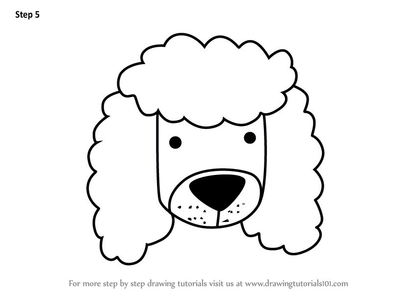 To Draw A Poodle Dog Face For Kids
