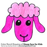 How to Draw a Sheep Face for Kids