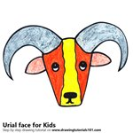 How to Draw an Urial Face for Kids