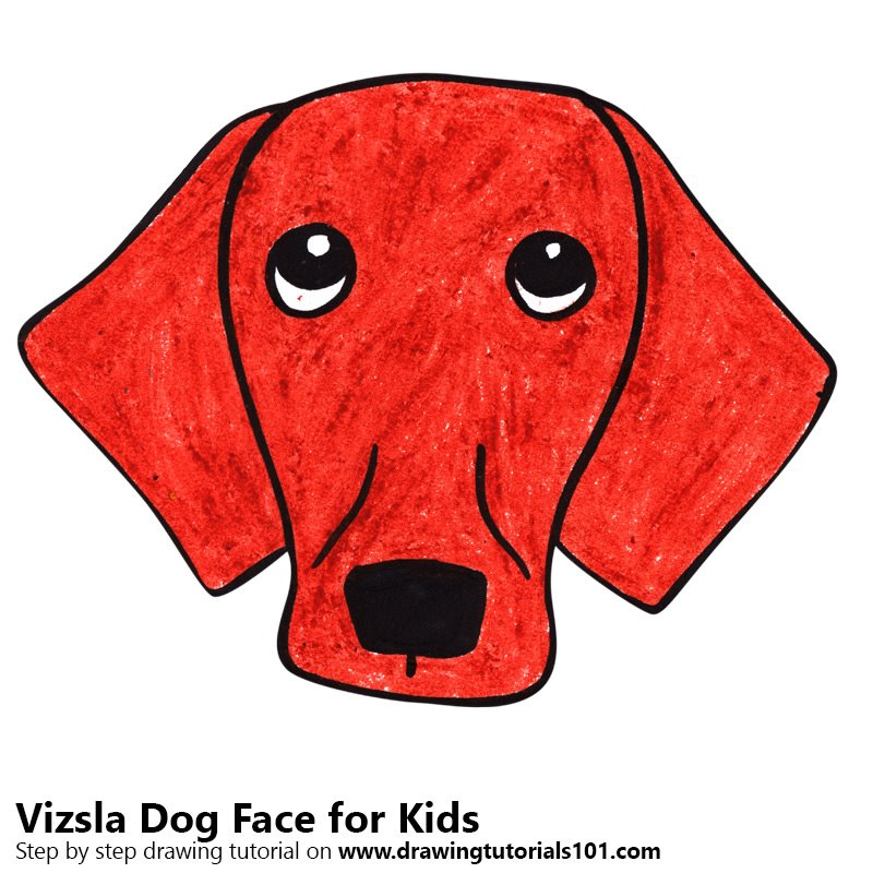Learn How To Draw A Vizsla Dog Face For Kids Animal Faces For Kids